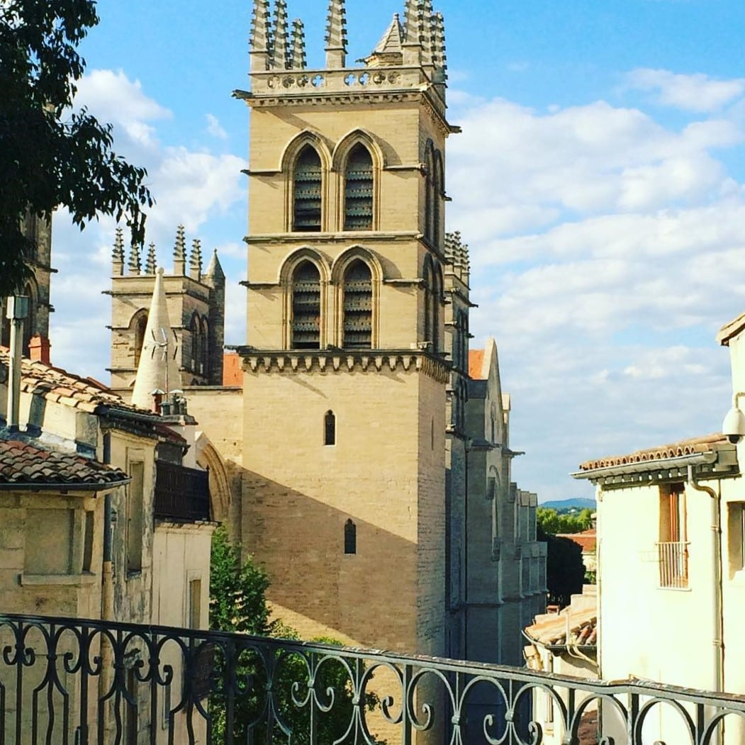 Cathédrale - AEF homestay in Montpellier