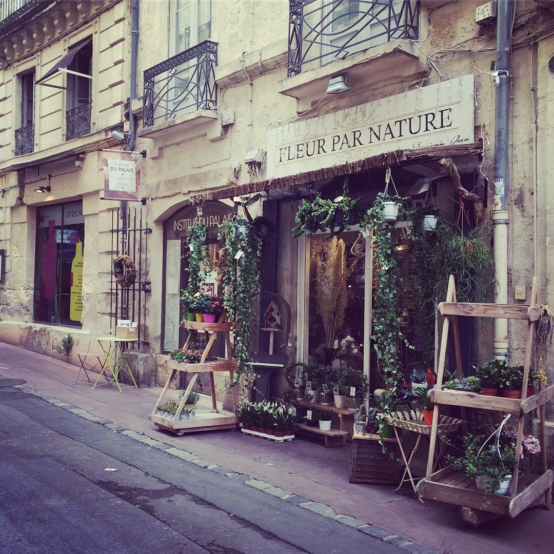 Place de la Canourgue - AEF homestay in Montpellier