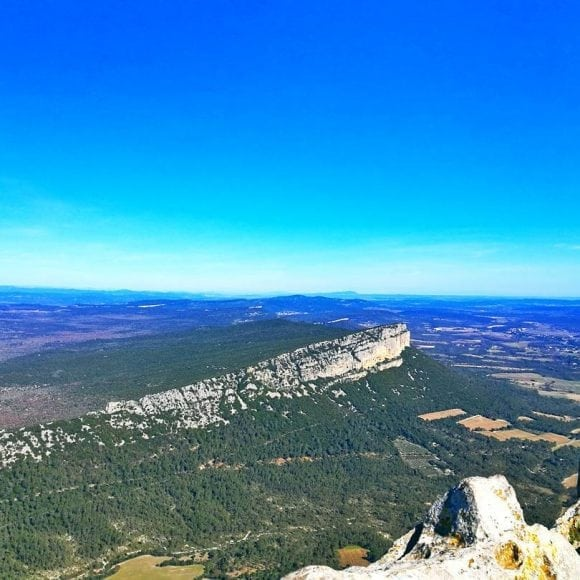 pic saint Loup - aef homestay in Montpellier