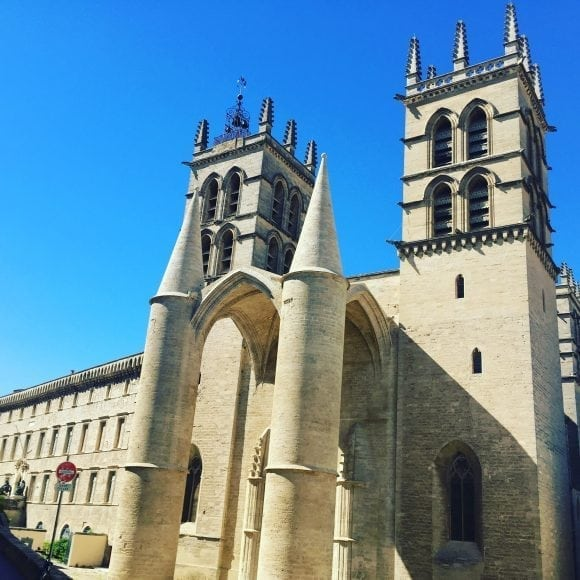 Cathédrale - AEF homestay in France